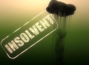 Insolvent-Public-Domain